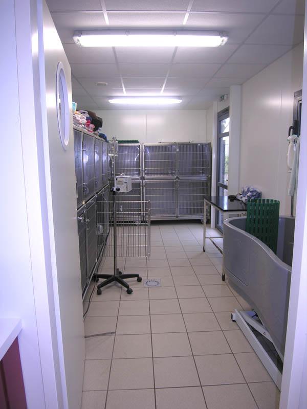 aménagement chenil construction clinique vétérinaire design