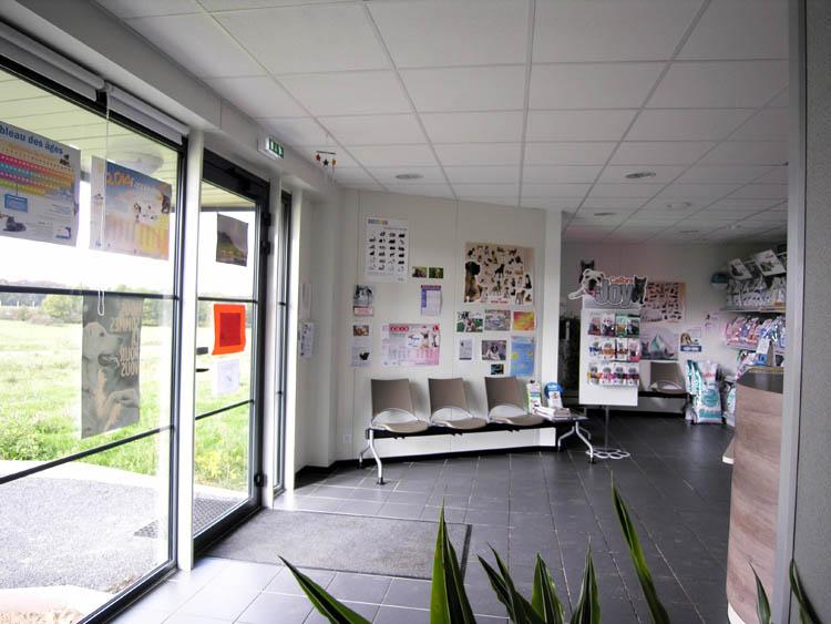 clinique vetérinaire Argenton (10)