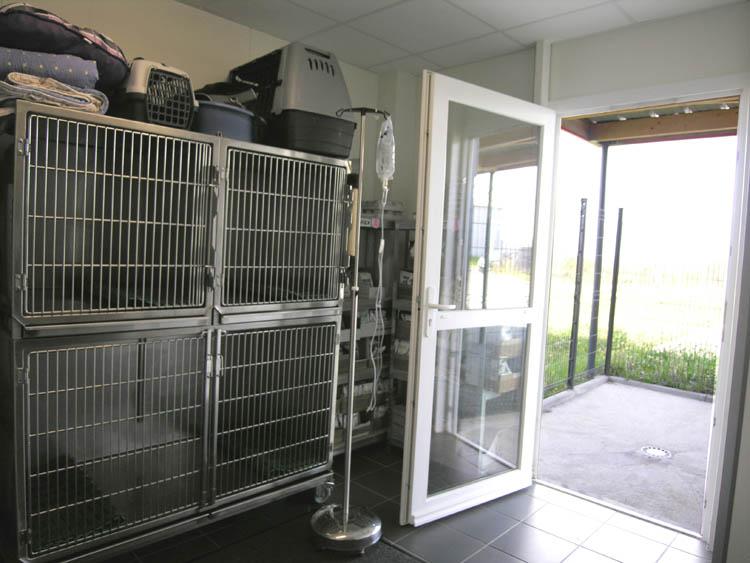 clinique vetérinaire Argenton (2)