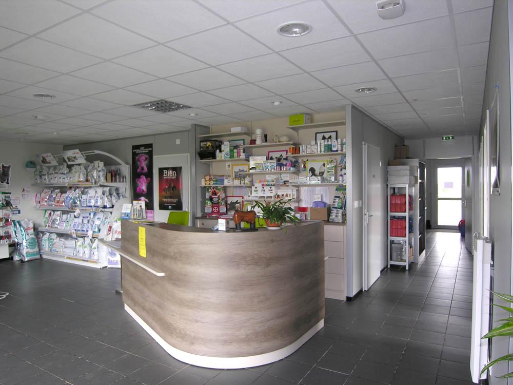 clinique vetérinaire Argenton (6)