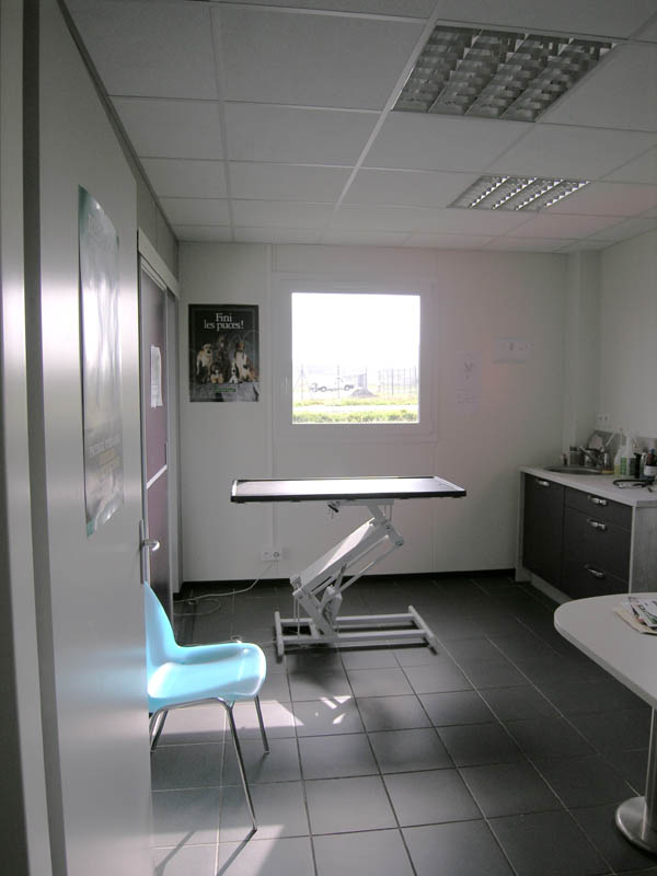 clinique vetérinaire Argenton (8)