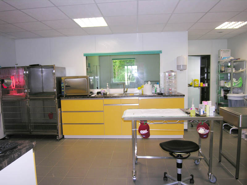 clinique vétérinaire intérieur design conçeption et construction Le Guillerm Constructions